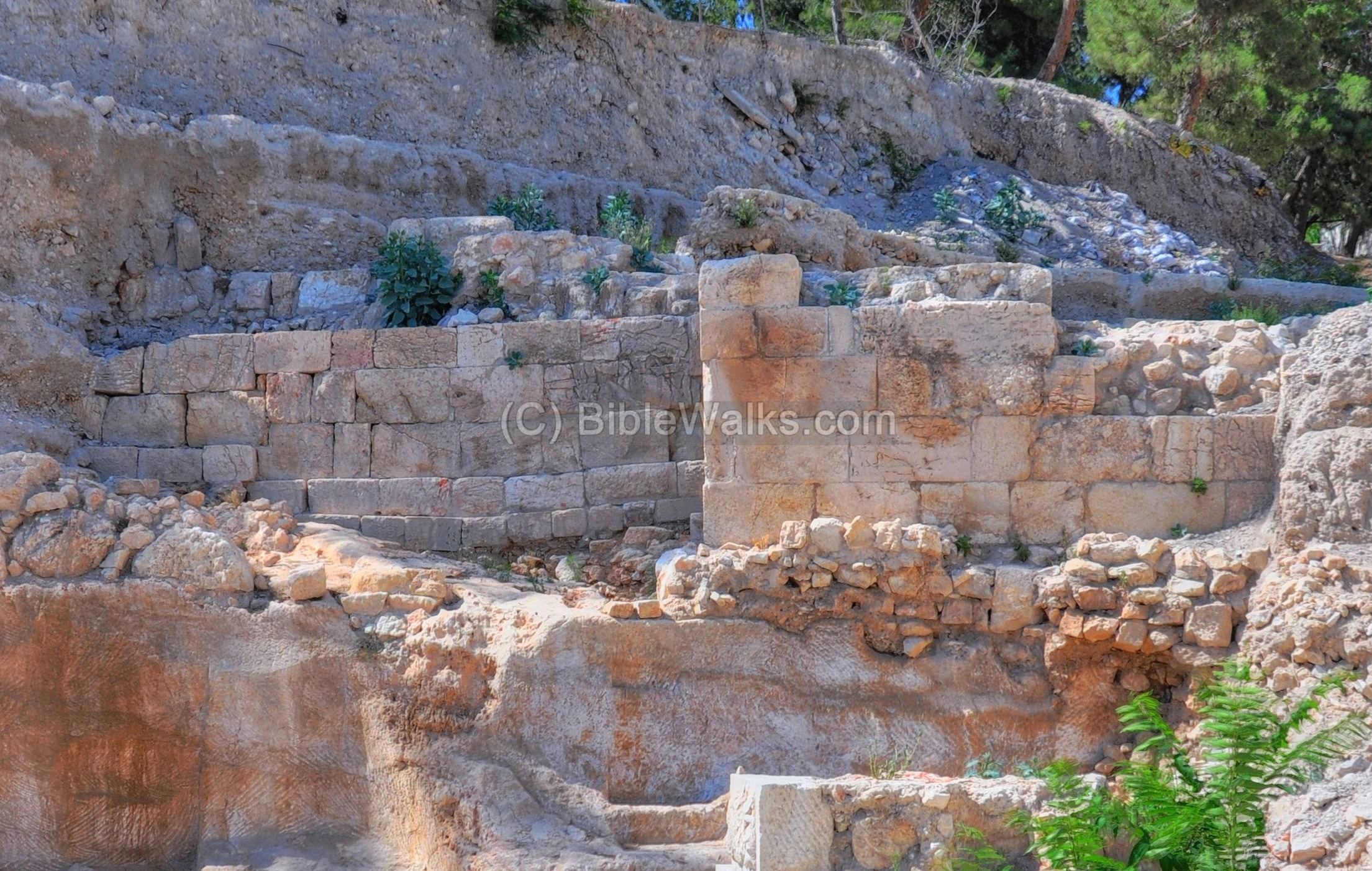 mount zion muslim dating site Mount zion the city that can't be  original mount zion site  wall on the slope between the temple mount and silwan dating back to the tenth.