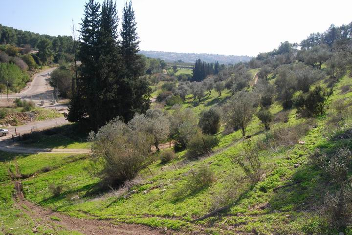 Ma'Alul/Nahalal: Ein Timrat and west valley