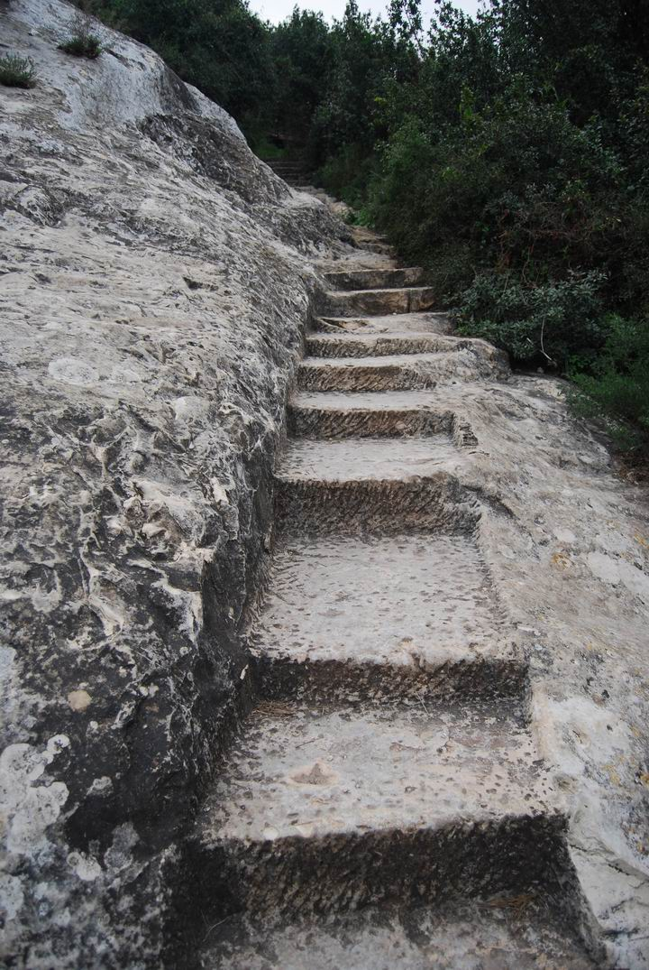 Hewn stairs on the path to Elijah's cave