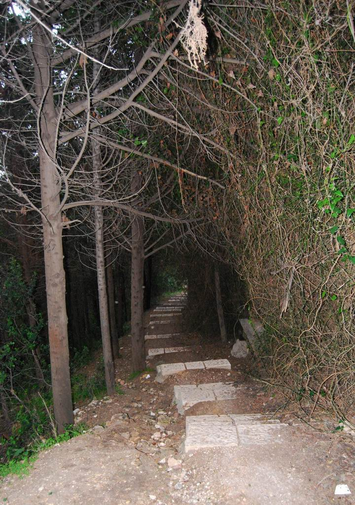 Path to Elijah's cave - lower section