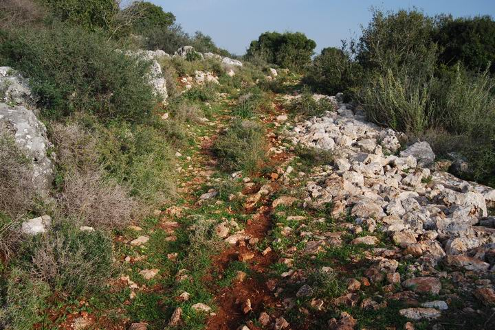 Khirbet Heskek: road below the site