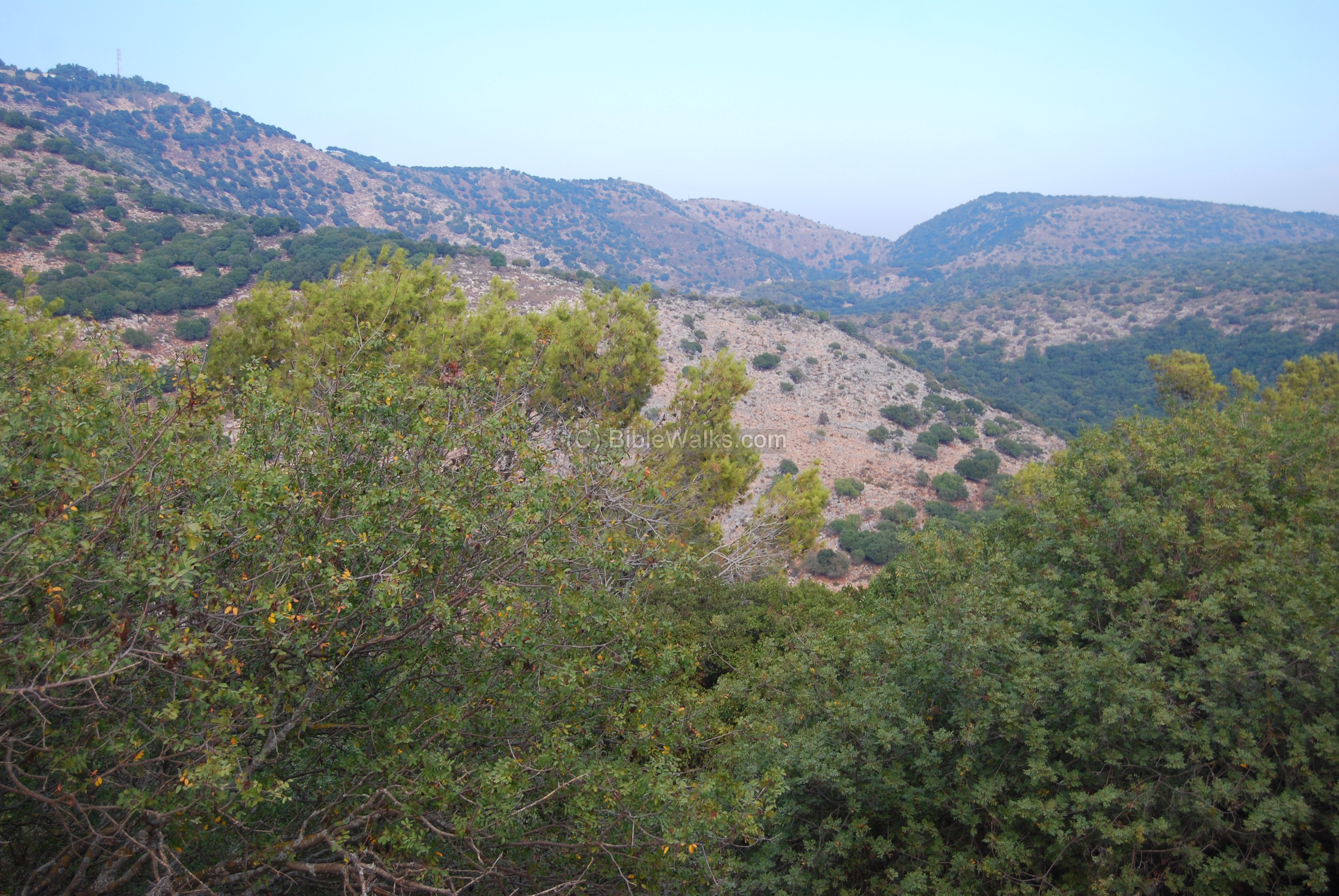 Betzet Israel  City new picture : The photo below shows a view of the eastern side. The Betzet creek ...