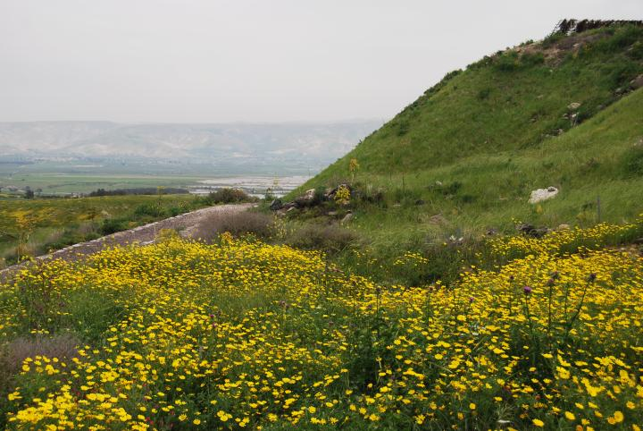 View towards the east - Jordan