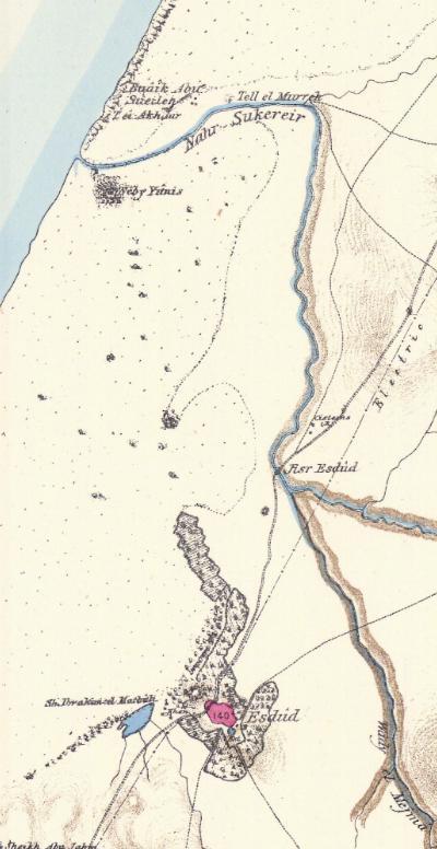 Ashdod Overview