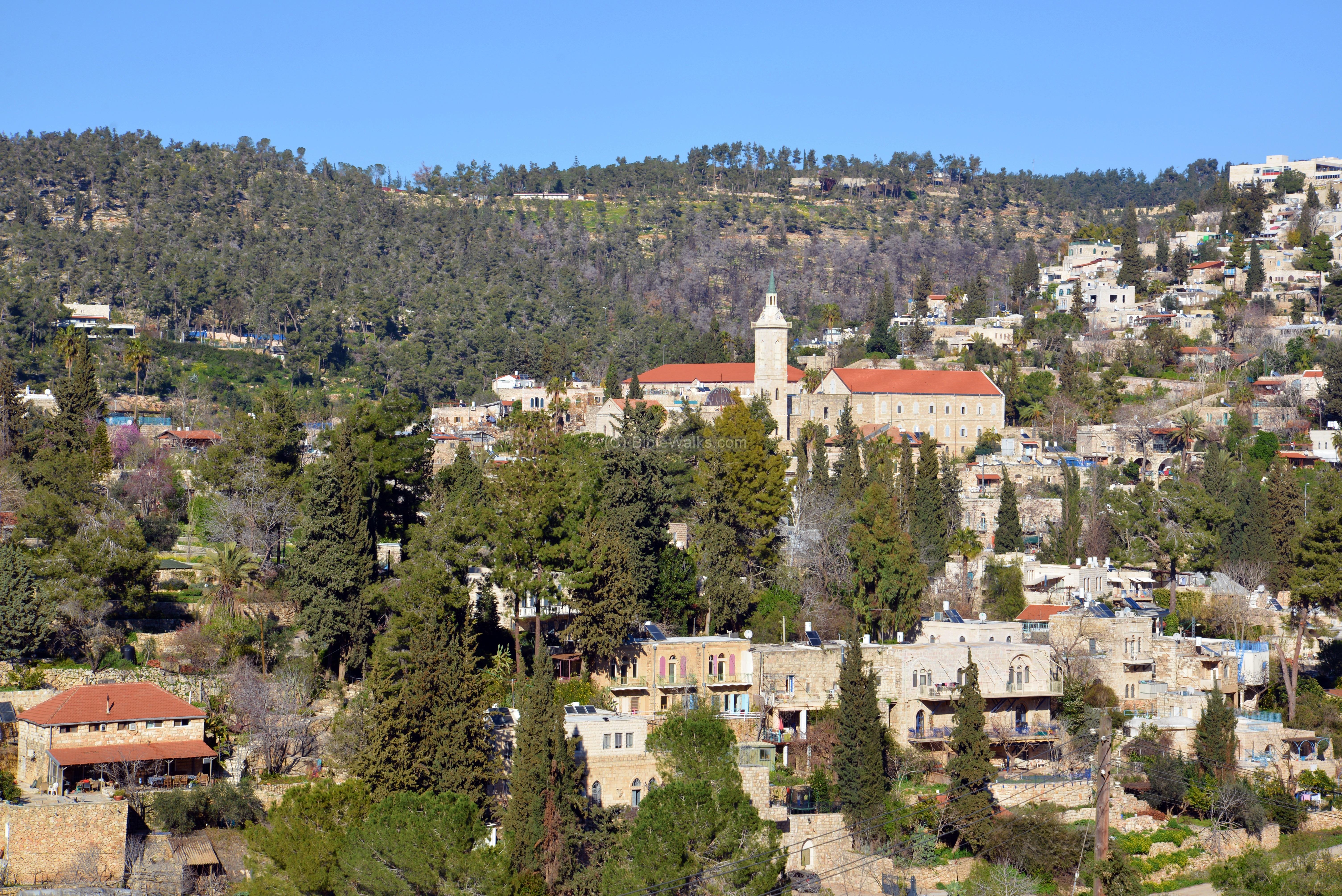 Bible study in Israel Archives - yehudit rose in israel