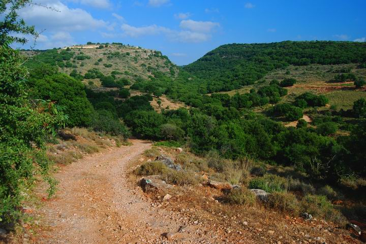View of the road to Khirbet Bilton, south-east to Beit Uriya