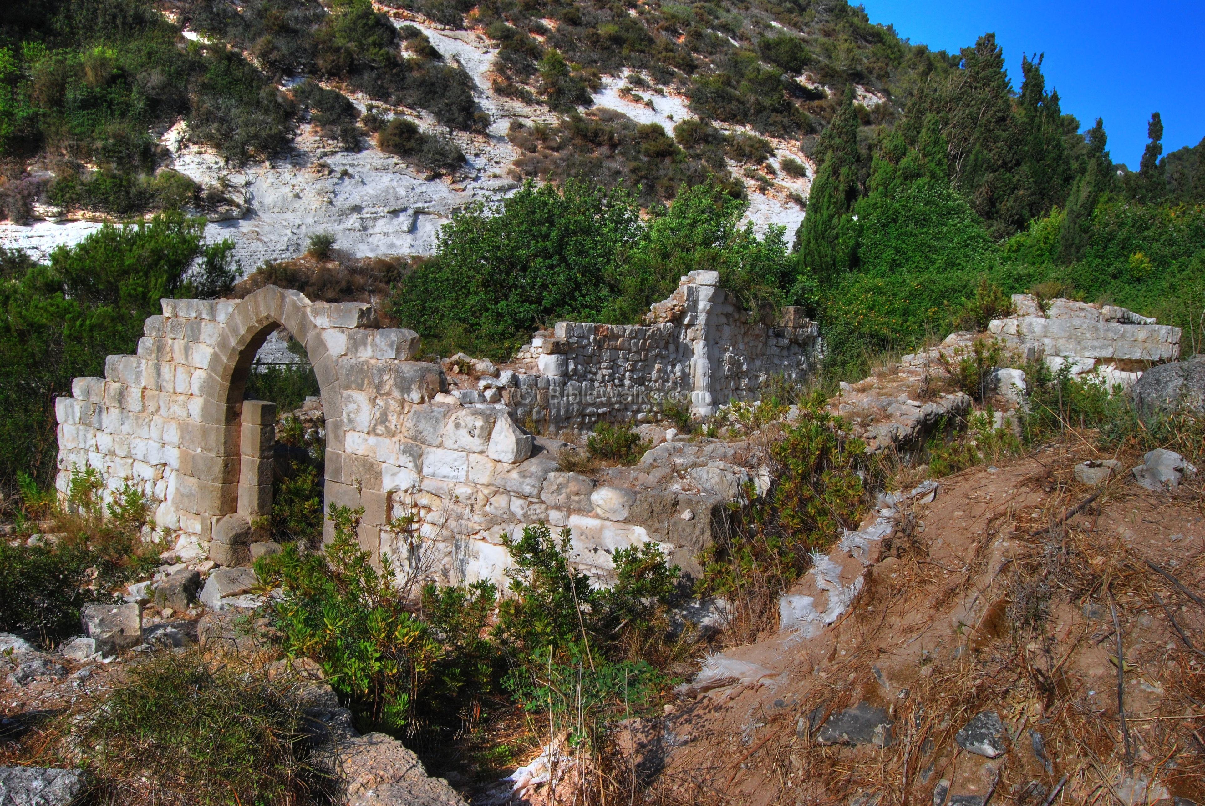 siah brook ruins of a carmelite monastery