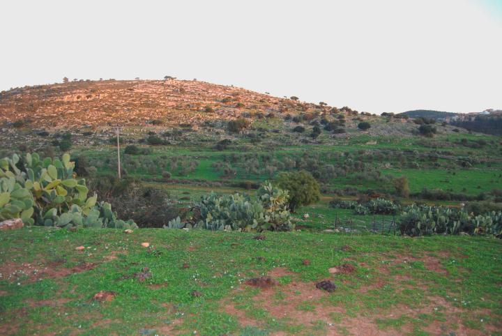 West view of Khirbet Hannania