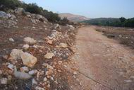 Roman road near Ibilin in the lower Galilee