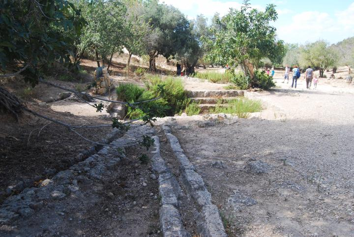 Emmaus/Nicopolis: Valley of springs