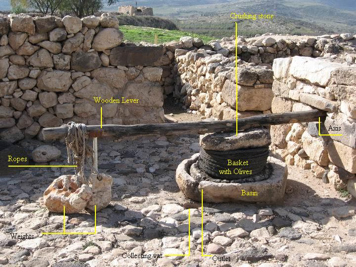 Oil Presses in the Holy Land